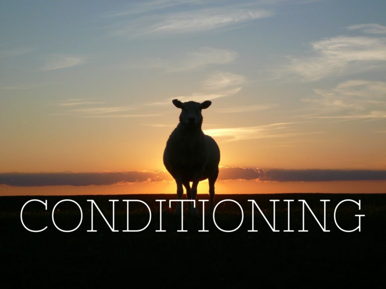 Conditioning – friend or foe?